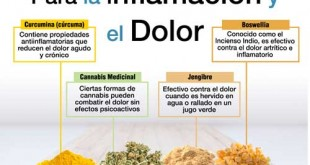 inflamacion-abdominal-remedios-caseros