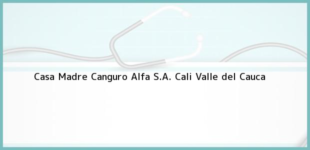 Teléfono, Dirección y otros datos de contacto para Casa Madre Canguro Alfa S.A., Cali, Valle del Cauca, Colombia