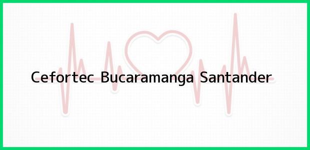 Teléfono, Dirección y otros datos de contacto para Cefortec, Bucaramanga, Santander, Colombia