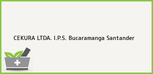 Teléfono, Dirección y otros datos de contacto para CEKURA LTDA. I.P.S., Bucaramanga, Santander, Colombia