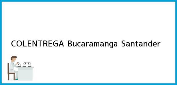 Teléfono, Dirección y otros datos de contacto para COLENTREGA, Bucaramanga, Santander, Colombia