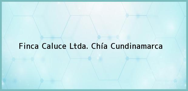 Teléfono, Dirección y otros datos de contacto para Finca Caluce Ltda., Chía, Cundinamarca, Colombia