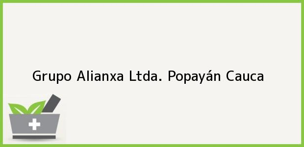 Teléfono, Dirección y otros datos de contacto para Grupo Alianxa Ltda., Popayán, Cauca, Colombia