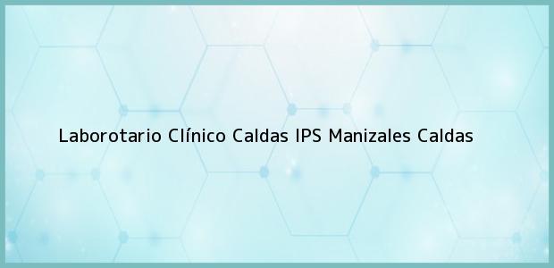 Teléfono, Dirección y otros datos de contacto para Laborotario Clínico Caldas IPS, Manizales, Caldas, Colombia