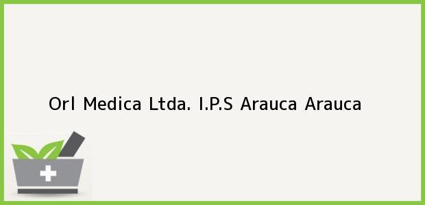 Teléfono, Dirección y otros datos de contacto para Orl Medica Ltda. I.P.S, Arauca, Arauca, Colombia