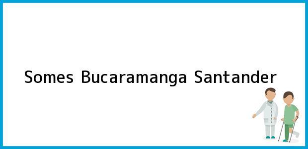 Teléfono, Dirección y otros datos de contacto para Somes, Bucaramanga, Santander, Colombia