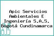 Apic Servicios Ambientales E Ingeniería S.A.S. Bogotá Cundinamarca