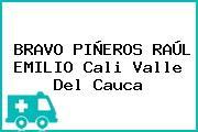BRAVO PIÑEROS RAÚL EMILIO Cali Valle Del Cauca