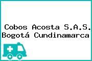 Cobos Acosta S.A.S. Bogotá Cundinamarca