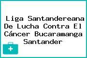 Liga Santandereana De Lucha Contra El Cáncer Bucaramanga Santander