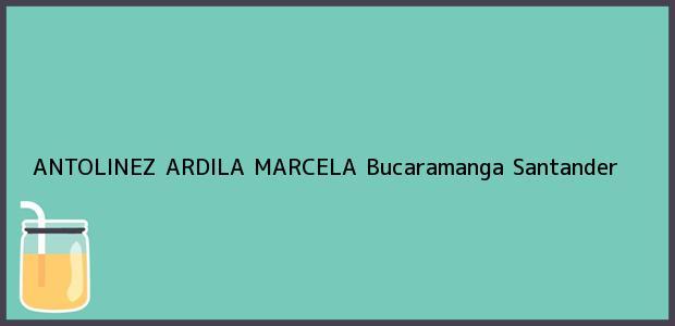 Teléfono, Dirección y otros datos de contacto para ANTOLINEZ ARDILA MARCELA, Bucaramanga, Santander, Colombia