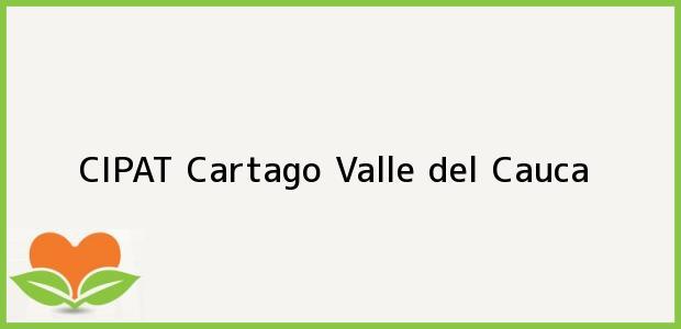 Teléfono, Dirección y otros datos de contacto para CIPAT, Cartago, Valle del Cauca, Colombia