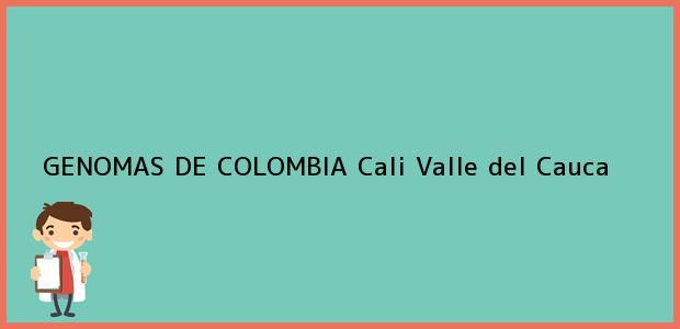 Teléfono, Dirección y otros datos de contacto para GENOMAS DE COLOMBIA, Cali, Valle del Cauca, Colombia