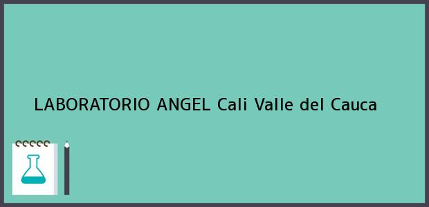Teléfono, Dirección y otros datos de contacto para LABORATORIO ANGEL, Cali, Valle del Cauca, Colombia