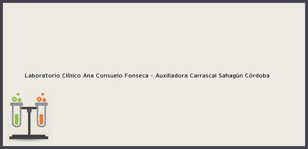 Teléfono, Dirección y otros datos de contacto para Laboratorio Clínico Ana Consuelo Fonseca - Auxiliadora Carrascal, Sahagún, Córdoba, Colombia
