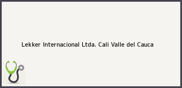 Teléfono, Dirección y otros datos de contacto para Lekker Internacional Ltda., Cali, Valle del Cauca, Colombia