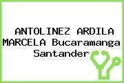 ANTOLINEZ ARDILA MARCELA Bucaramanga Santander