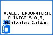 A.Q.L. LABORATORIO CLÍNICO S.A.S. Manizales Caldas