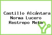 Castillo Alcántara Norma Lucero Restrepo Meta