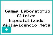 Gamma Laboratorio Clínico Especializado Villavicencio Meta