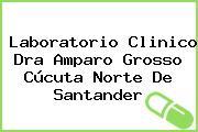 Laboratorio Clinico Dra Amparo Grosso Cúcuta Norte De Santander