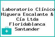 Laboratorio Clínico Higuera Escalante & Cía Ltda Floridablanca Santander