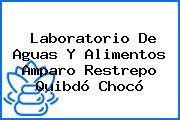 Laboratorio De Aguas Y Alimentos Amparo Restrepo Quibdó Chocó