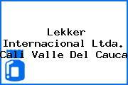 Lekker Internacional Ltda. Cali Valle Del Cauca