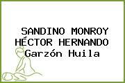 SANDINO MONROY HÉCTOR HERNANDO Garzón Huila