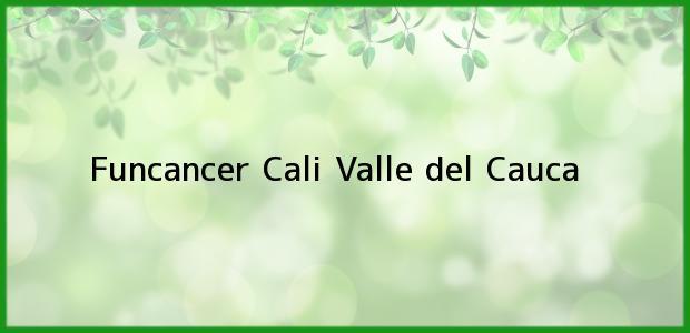 Teléfono, Dirección y otros datos de contacto para Funcancer, Cali, Valle del Cauca, Colombia